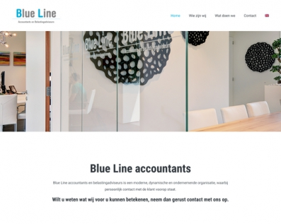 Blue Line Accountants